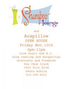 The Shampoo Lounge